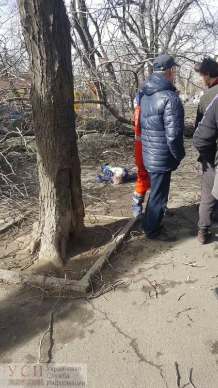 Девушка погибла в центре Одессы: на нее упало дерево (фото)