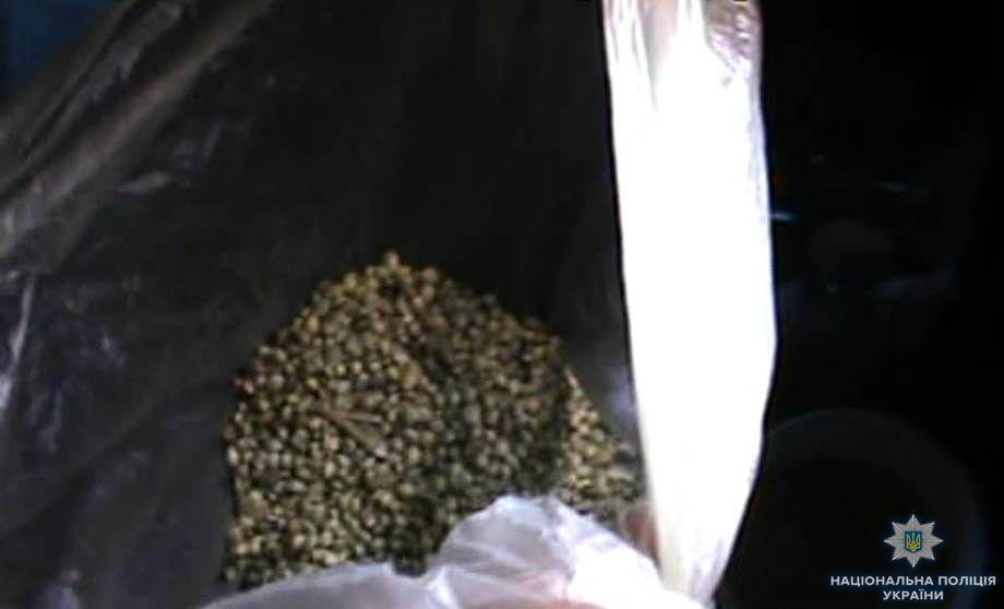 В Измаиле полицейские разоблачили мужчину, который незаконно выращивал и хранил наркосодержащие растения
