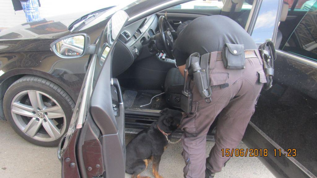 Служебный пес помог Измаильским пограничникам  обнаружить наркозелье у гражданина Турции (ФОТО)