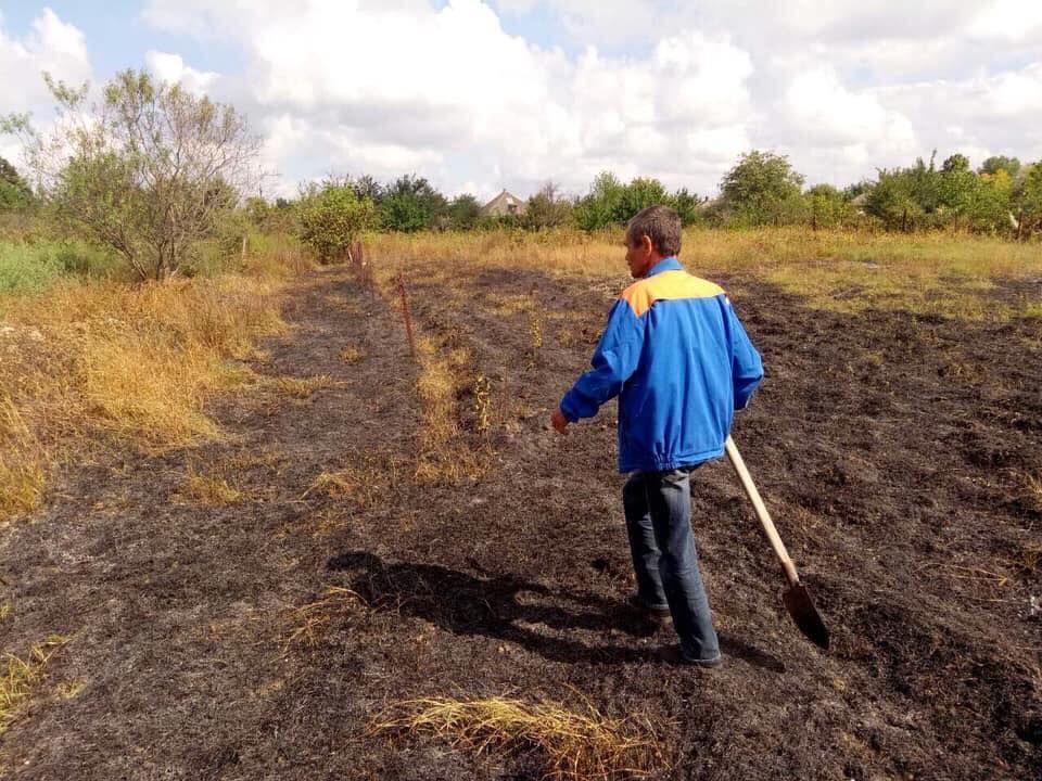 В Измаильском районе во время пожара в поле пострадала женщина (ФОТО)